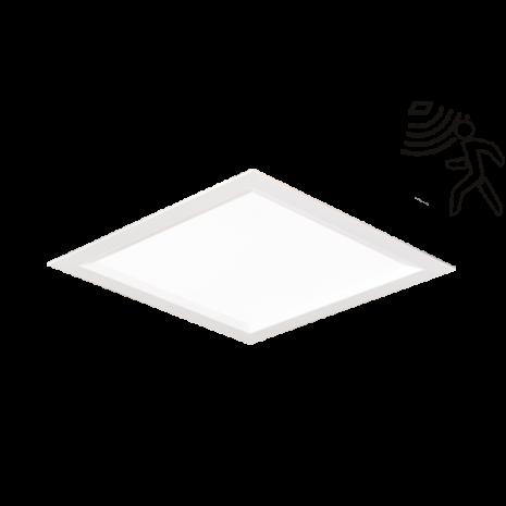 light-step-pt_pir600x0_84d_600x0_84d_600x0_84d